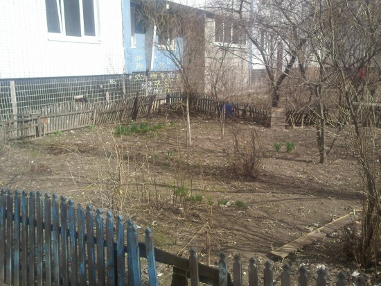 Spring is Growing in Moscow Russia…