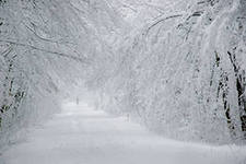 Snow Snow Snow and By Golly Some More Snow in Our Part of Russia…
