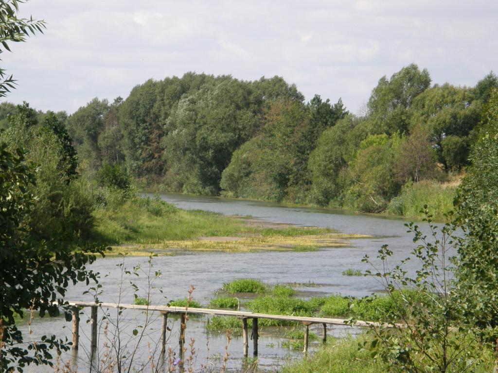 Para River...